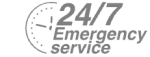 24/7 Emergency Service Pest Control in Heston, Osterley, TW5. Call Now! 020 8166 9746